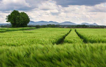 Giá đền bù khi thu hồi đất được tính thế nào?